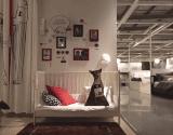 IKEA Shelter Dogs