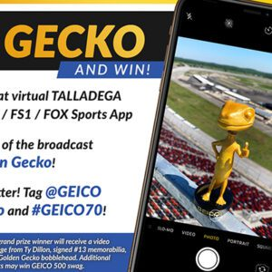 GEICO/NASCAR Social Promotions